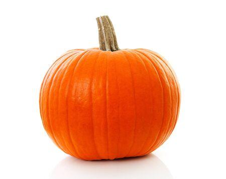 calabaza: Una gran calabaza naranja en primer plano sobre fondo blanco