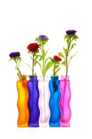 colorful Asters flowers in vases over white background Stock Photo - 10875387