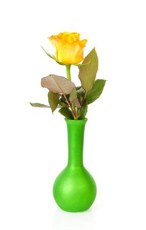 vase: One yellow rose in green vase over white background Stock Photo