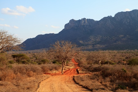 African landscape in Ngulia Rhino Sanctuary Kenya photo