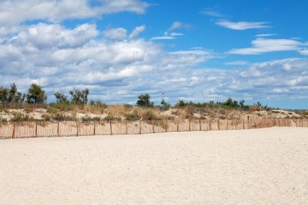 Dunes on the beach with cloudy sunny sky photo