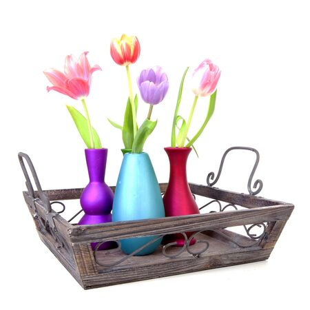 Dutch tulips in colorful vases on tray over white background