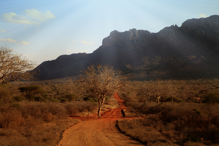Typical African landscape in Kenya with mountains