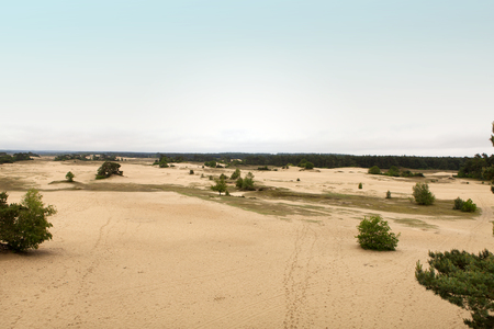Big empty sand plain in the Netherlands