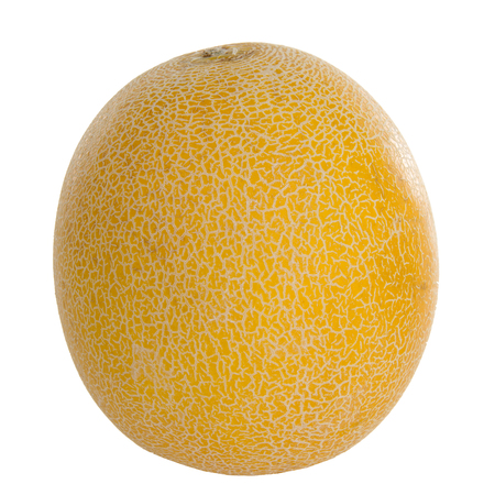 One fresh yellow mellon over white background