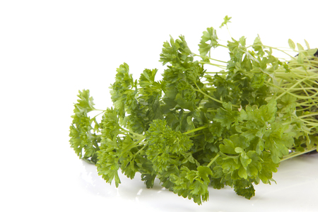 Fresh parsley in closeup over white background