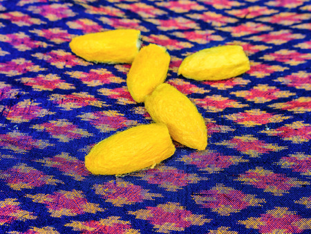Close up silkworm cocoon on messaline stock photo