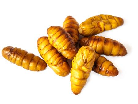 pupae: Silkworm pupae on white background Stock Photo