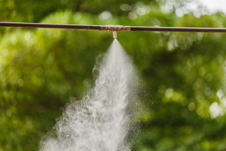 squirted: Water spray by High pressure tube