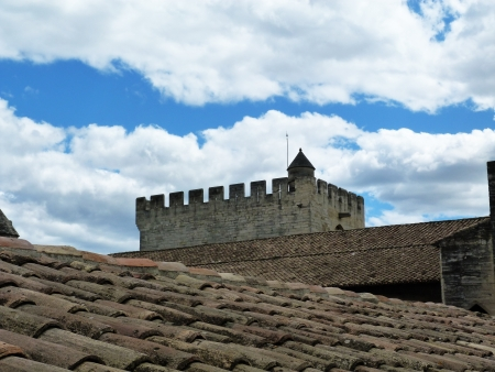 Roof of the Papal Palace in Avignon, France Stock Photo - 15854848
