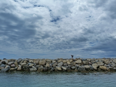 View of the sea at St  Maries de la Mer, Camargue, France Stock Photo - 16622605
