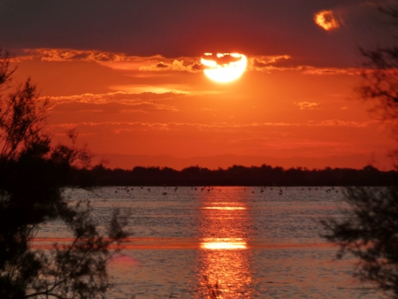 camargue: Lagoon in Camargue at sunset, France Stock Photo