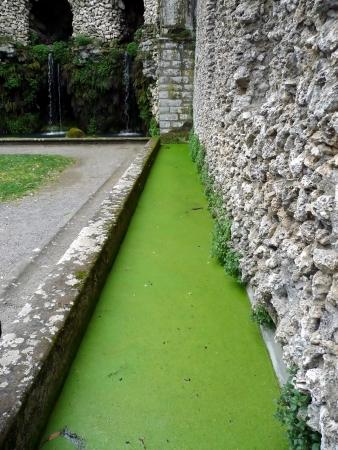 etrurian: Fountain in the Park of Villa Lante, Bagnaia, Viterbo, Italy