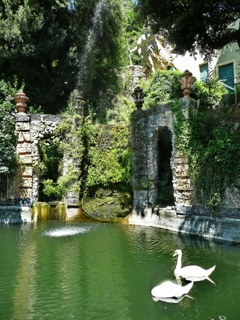 Pond in the park of Villa Garzoni, Collodi, Tuscany, Italy photo