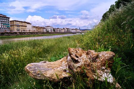 arno: Along the Arno River Florence Italy