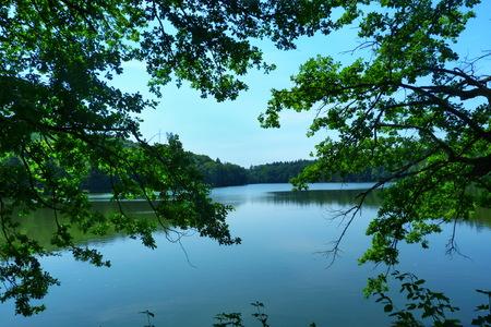 lakefronts: Konopiste Lake, Czech Republic