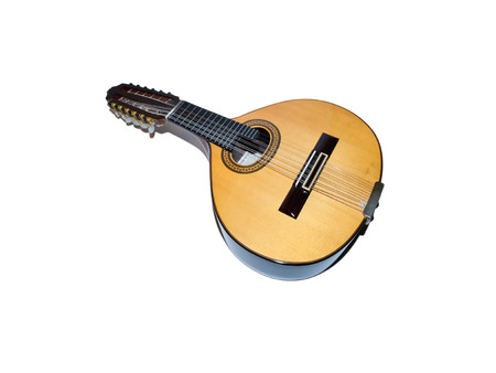 handmade instrument similar to a twelve-string lute
