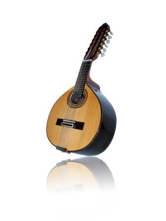 handmade instrument similar to a twelve-string lute