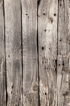 textura: Aged wooden door with nails in front of use for texture Stock Photo