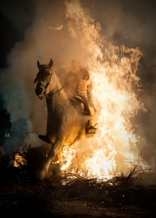 Horses jumping above the fire without fear Stock Photo