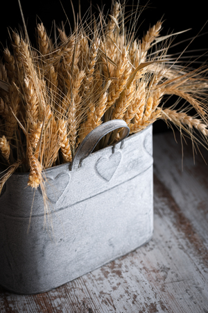 wheat in the foreground simulating bouquet in tin container and darkened in its outline Stok Fotoğraf