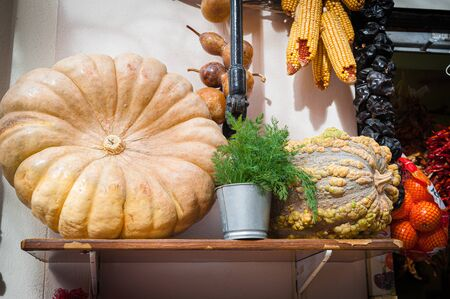 close-up of pumpkin next to vegetables, shown from the outside of fruitteria