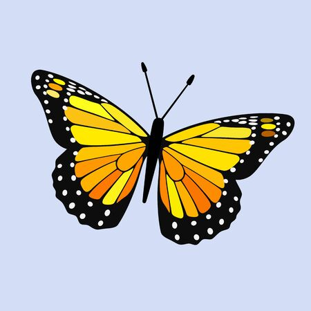 Yellow Winged Butterfly Vector - Monarch Digital Design