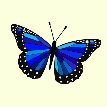Butterfly Vector - Blue Wings, Simple Abstract Digital Illustration
