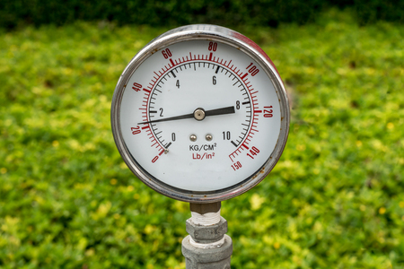 gage: Pressure Gage on green blurred background