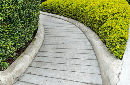 Curve concrete ramp for wheelchair with trimmed plants Stock Photo