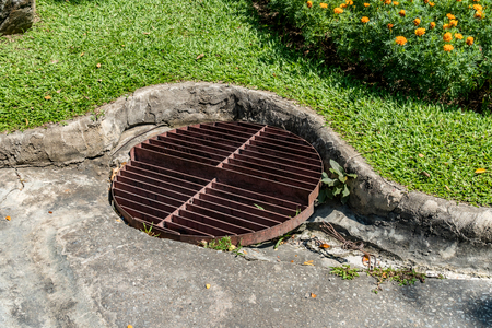 Rusty Metal Drain Cover With Lawn And Flowers Plants Stock Photo   65279322