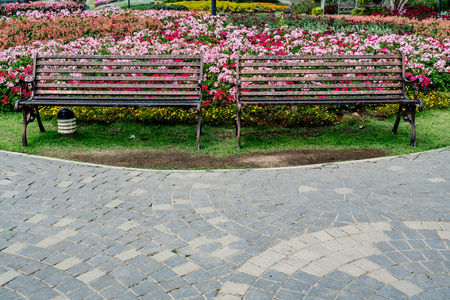 Metal park bench with colorful flowers in the park Reklamní fotografie