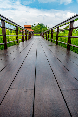 Wood footbridge in the rice paddy in cloudy day