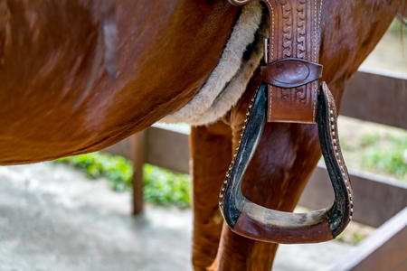 Closeup image of stirrup on horse saddle Reklamní fotografie