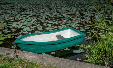 Green plastic boat on the pond with green water lily leaves Reklamní fotografie