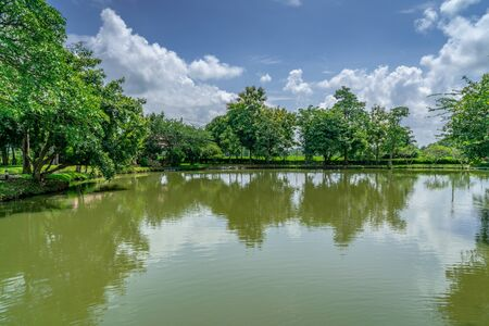 Tropical green garden with lake and blue sky background