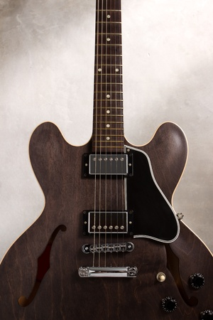 regulators: Close up semi hollow guitar