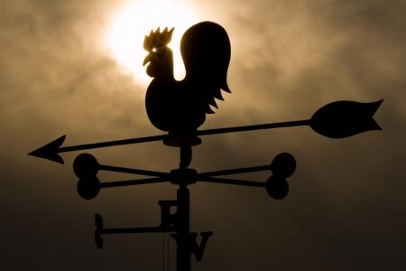 Silhouette weathercock photo