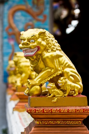 Row of golden lions in front of the entrance , Chinese temple decoration Stock Photo - 15615450
