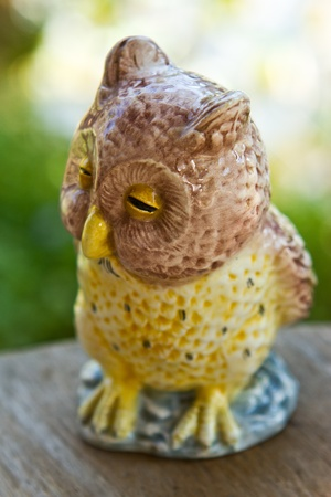 close up owl, decorated in the garden photo