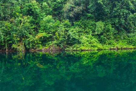 kao sok: The Nature reflection on water at Ratchaprapha Dam at Khao Sok National Park, Suratthani Province, Thailand. Stock Photo