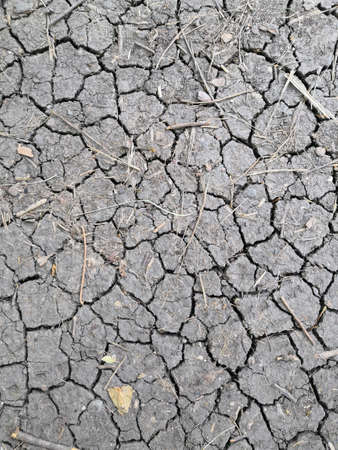 cracked earth. detail of a cracked earth from dryness, natural background top view