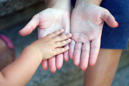 child's hand in the hands of an adult. mother's hand lead her child son in summer forest nature outdoor, trust family concept