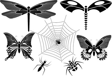 set of insects Stock Vector - 6800237
