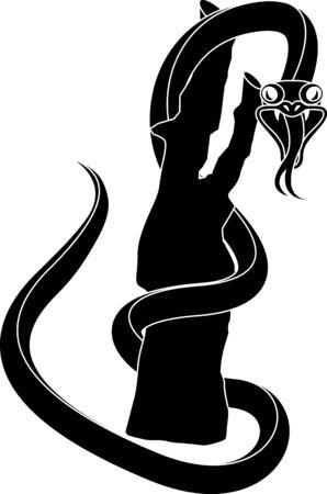 viper: Black snake
