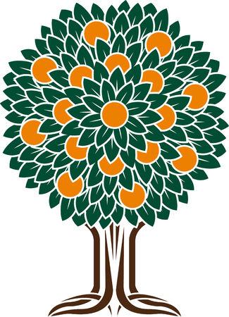 orange tree: orange tree  stencil  vector illustration Illustration
