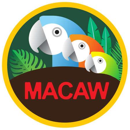 macaw: Circular Macaw icon