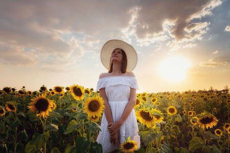 Beautiful young girl enjoying nature on the field of sunflowers at sunset. Asian girl in a cute white dress and hat enjoys summer and vacation. Standard-Bild
