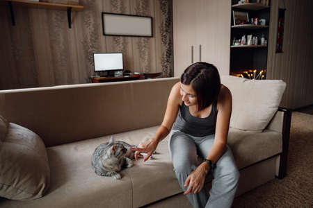 Beautiful young woman with a house cat on the couch. cozy family atmosphere.
