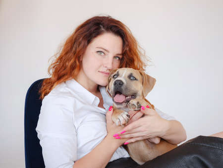 beautiful redhead woman with Cute puppy American Staffordshire Terrier posing in studio. Concept of care, education, obedience training, raising pets